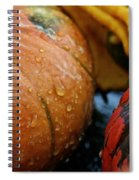 Cold And Wet Spiral Notebook