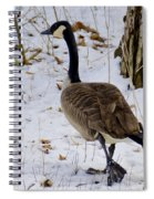 Cold Footed Goose On The Loose Spiral Notebook