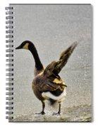 Cold Goose Bath Spiral Notebook