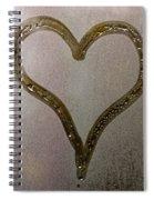 Cold Heart Spiral Notebook