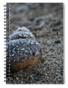 Cold Shell Spiral Notebook