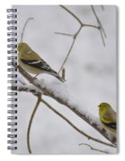Cold Yellow Finch Walk Spiral Notebook