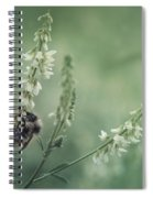 Collecting The Summer Spiral Notebook