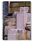 Collection Of Artifacts Number 1 Spiral Notebook
