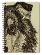 Collie Spiral Notebook