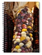 Color Corn Spiral Notebook