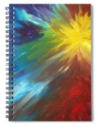 Color Explosion Spiral Notebook