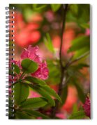 Color In The Jungle Spiral Notebook