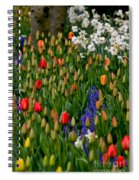Color Mix Spiral Notebook