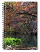 Color Splash In Central Park Spiral Notebook