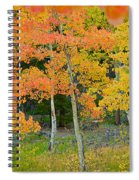 Colorado Aspens Bejeweled Spiral Notebook