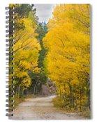 Colorado Autumn Aspen Road Boulder County Spiral Notebook