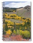 Colorado Autumn Aspens Colors Spiral Notebook