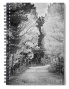 Colorado Rocky Mountain Aspen Road Portrait Bw Spiral Notebook