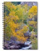 Colorado Rocky Mountain Autumn Canyon View Spiral Notebook
