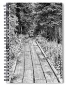 Colorado Rocky Mountain Forest Path Bw Spiral Notebook