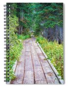 Colorado Rocky Mountain Forest Path Spiral Notebook