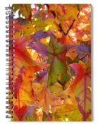 Colorful Autumn Leaves Art Prints Trees Spiral Notebook