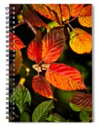 Colorful Blackberry Leaves 1 Spiral Notebook