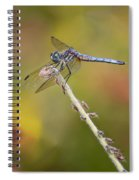 Colorful Dragonfly Dream Spiral Notebook