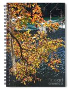 Colorful Fall Leaves Over Blue Water Spiral Notebook