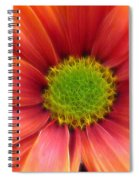 Colorful Fantasy Spiral Notebook