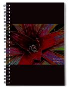 colorful Frond Spiral Notebook