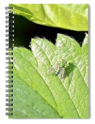 Colorful Garden Fly 2 Spiral Notebook