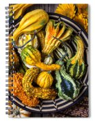 Colorful Gourds In Basket Spiral Notebook