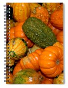 Colorful Gourds Spiral Notebook