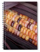 Colorful Indian Corn Spiral Notebook