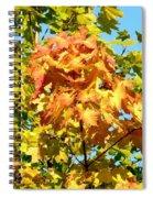 Colorful Leaf Cluster Spiral Notebook
