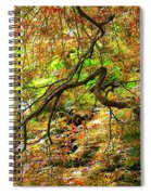 Colorful Maple Leaves Spiral Notebook