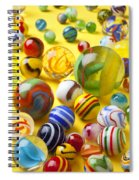 Colorful Marbles Two Spiral Notebook