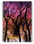 Colorful Silhouetted Trees 27 Spiral Notebook