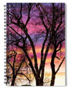 Colorful Silhouetted Trees 33 Spiral Notebook