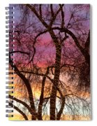 Colorful Silhouetted Trees 37 Spiral Notebook