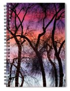 Colorful Silhouetted Trees 9 Spiral Notebook