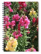 Colorful Snapdragons In San Antonio Spiral Notebook