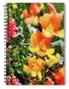 Colorful Snapdragons Spiral Notebook