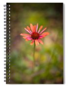 Colorful Stand Spiral Notebook