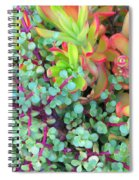 Colorful Succulent Plants For You Spiral Notebook