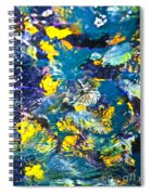 Colorful Tropical Fish Spiral Notebook