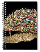 Colorful Welded Steel Encaustic On Wood Sculpture Spiral Notebook
