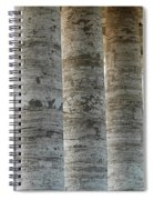 Columns And Hanging Lamp Spiral Notebook