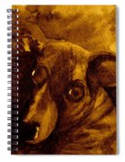 Come In Sepia Version Spiral Notebook