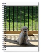 Come Out And Play With Me Spiral Notebook