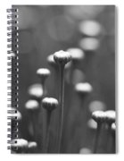 Coming Up Daisies Abstract In Black And White Spiral Notebook