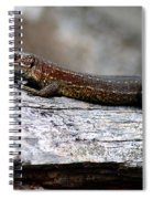 Common Lizard Spiral Notebook
