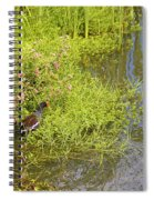 Common Moorhen At The Waters Edge Spiral Notebook